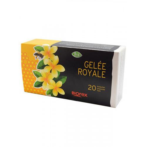 MORGA Gelée Royale Trinkamp 1500 mg Bio 20 x 10 ml